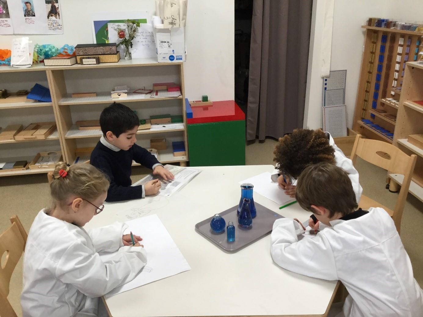 Sciences Montessori enfants 6-12 ans Ecole Montessori Beautiful Minds